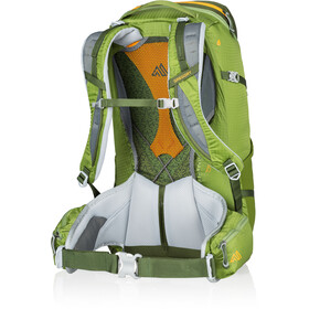 Gregory Zulu 30 Backpack moss green